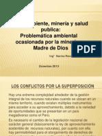 Problematica Ambiental Diciembre 2013