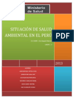 SITUACIÓN DE SALUD AMBIENTAL EN EL PERÚ - GRUPO 7
