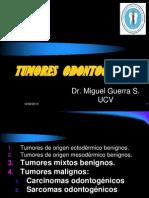 15. T. Odontogénicos