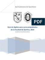 Guía de matemáticas propedéutico 2014