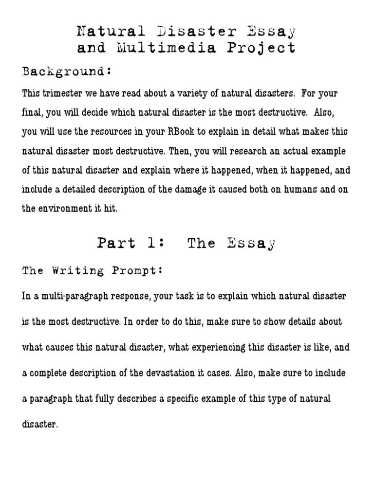 Implementation reflection paper Essay