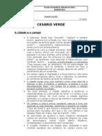 TEMÁTICAS - cesarioverde