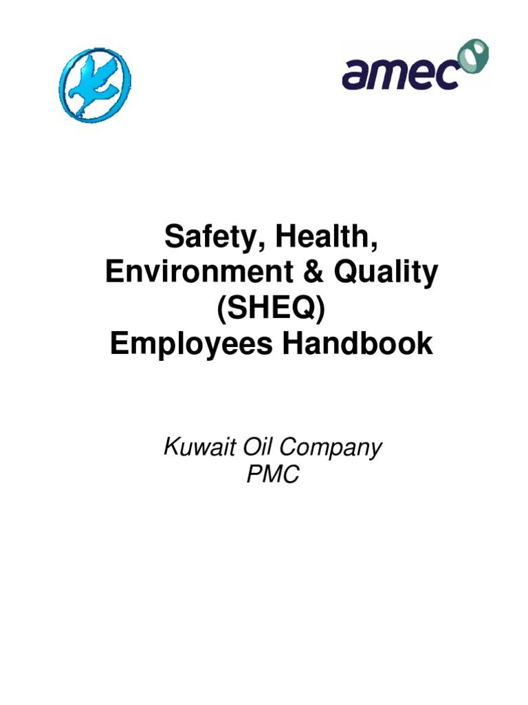 certified quality auditor handbook pdf