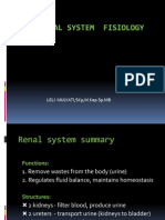 Fisiology Renal System