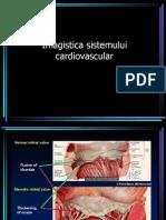 Imagistica Sistemului Cardiovascular
