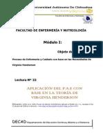 22 Aplicacion Del p.a.e. Con Base en La Teoria de Virginia Henderson