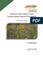 Evaluación de cultivos energéticos 2013
