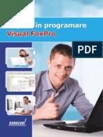 34 Lectie Demo Initiere in Programare