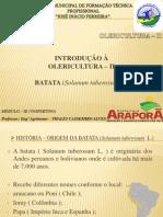 BATATA - APRESENTAÇÃO