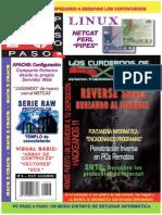 Reverse SHELL Burlando Al Firewall