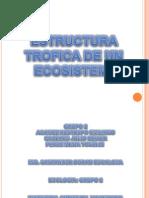 Estructura Trofica de Los Ecosistemas