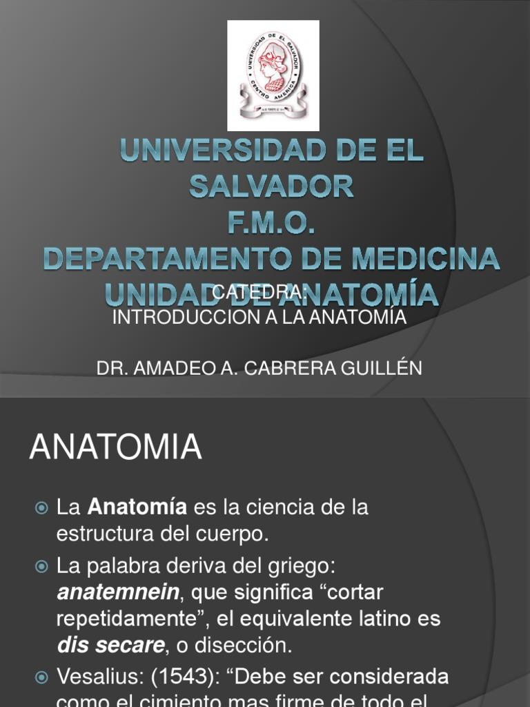 INTRODUCCION A LA ANATOMIA.pptx