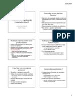 Computação Natural - Aula 09 - Parâmetros em Algoritmos de Computação Natural.pdf