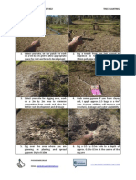 Tops Landscaping-fact Sheet 002-Tree Planting