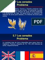 Problema de Los Cereales