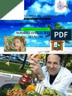 Ramos Mamani Otilia Expocicion Computo 1111111111 Hoy