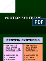 Protein Synthesis2005