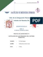 2012 Histologia Del Aparato Digestivo