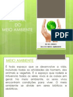 meioambiente-110606072456-phpapp01