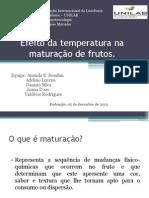 Efeito_da_temperatura_na_maturação_de_frutos