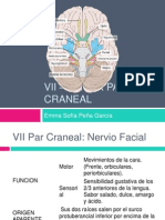 VII - VII - IX Par Craneal.pptx