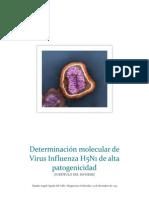 Virus Influenza (H5N1) de Alta Patogenicidad