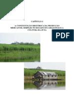 3 a constituição histórica produção mercantil simples estado do Amazonas e a cultura da juta