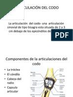 ARTICULACIÓN DEL CODO (2)