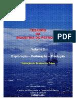 Thesauro Da Industria Petrolifera Vol.2