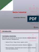 Sector Industrial Contenidos Mnimos