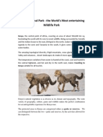 Kenya National Park - the World's Most entertaining Wildlife Park