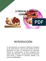 EXPOSICIÓN-CARNES FRESCAS Y AVES DE CORRAL