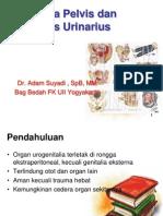 Trauma Pelvis Dan Urologi