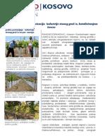 Fixed 030 2013 12 NOA_table Grapes Export (1).Doc,Serbian