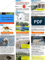 Hairy-nosed Otter Conservation Brochure
