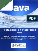 Java Modulo 7