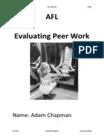 Evaluating Peer Work