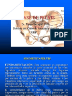 Pelvis Femenina Modificada