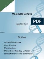 Molecular Endocrinology Agustini