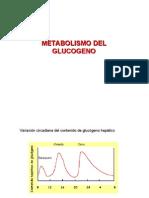 glucogenolisis y glucogenesis