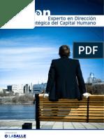 Curso de Experto Direccion Capital Humano