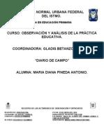 Diario de Campo Diana Subir