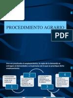 PROCEDIMIENTO AGRARIO.pptx