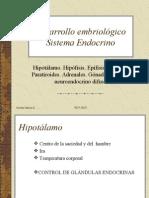 Desarrollo embriológico Sistema Endocrino 1