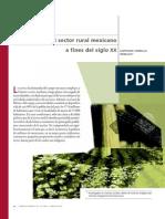 El Sector Rural Mexicano a Fines Del Siglo XX