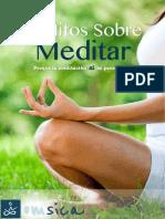 Reporte Mitos Meditacion