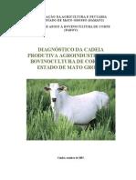 Bovinocultura no MT.pdf