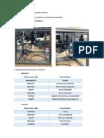 Caracterización de plantas ARVAX