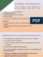 Características da População Agrícola Portuguesa
