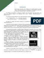 texto-resumido-principios-fisicos-ultrassom.pdf